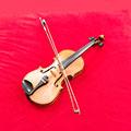 Geige Instrument