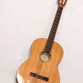 Gitarre Instrument
